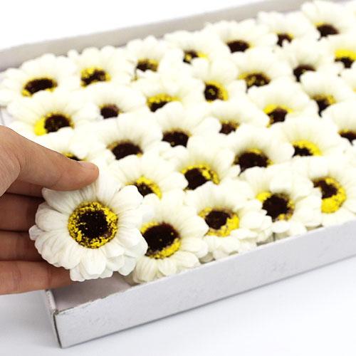 비누꽃 거베라 흰색 50송이 한박스 꽃대미포함