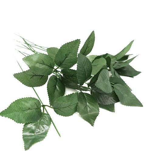 비누꽃대 잎+철사10개 할인