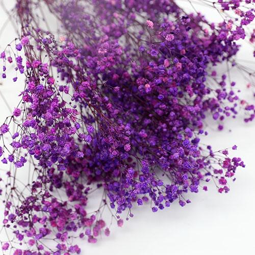 보라색안개꽃 프리져버드플라워  듬뿍한단