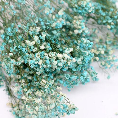 하늘색안개꽃 프리져버드플라워  듬뿍한단