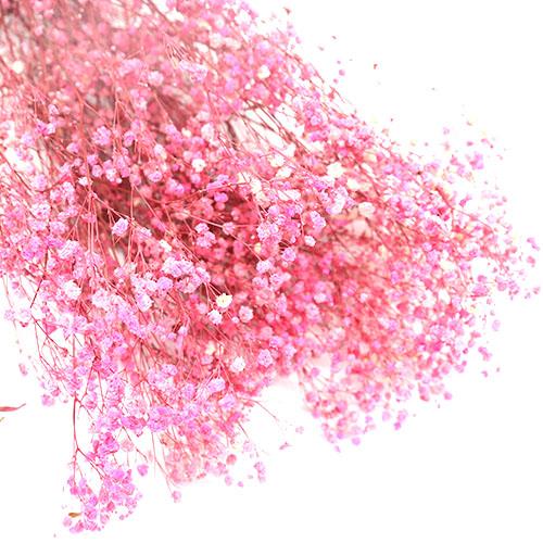 핑크안개꽃 프리져버드플라워 듬뿍한단
