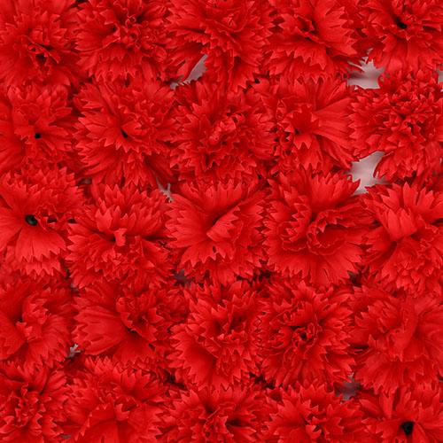 비누꽃 카네이션 빨강색 50송이 1박스 비누꽃 꽃대미포함