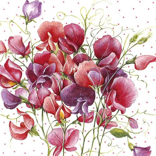자주빛 꽃 냅킨 5장 K-16-027